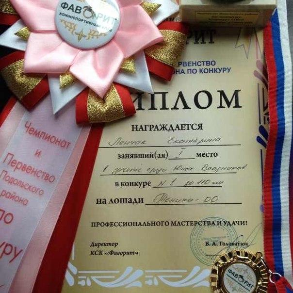 Чемпионат Подольского района по конкуру