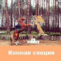 "КСШ ""Зубрёнок"""