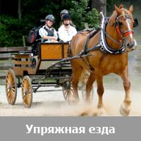 Упряжная езда